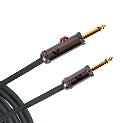 PW-AGL-10 i gruppen Kabler / Planet Waves / Instrument Cables / Custom Series hos Crafton Musik AB (370701887050)
