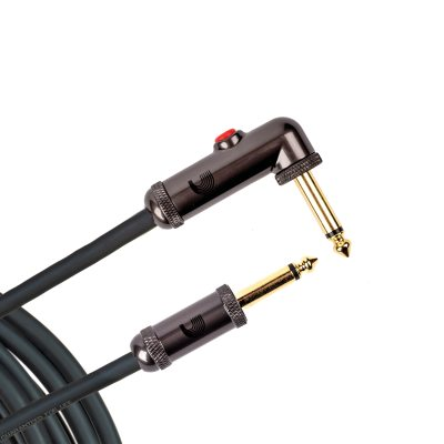PW-AGLRA-10 i gruppen Kabler / Planet Waves / Instrument Cables / Custom Series hos Crafton Musik AB (370701937050)